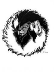 Ying Yang Lions